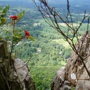 mount tom state reservation
