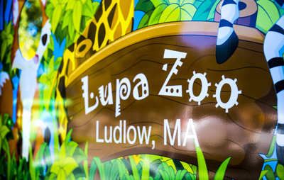 virtual lupa zoo
