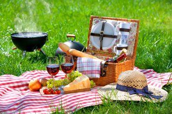 blog road trip 1 picnic