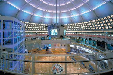 dr.seuss bday basketball hall