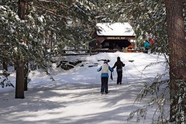 winter wmass northfield